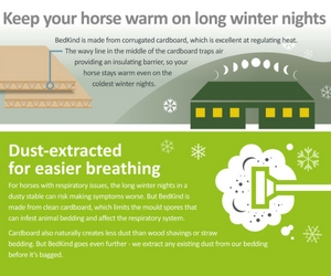 Winter is coming: It's time to get your stable ready